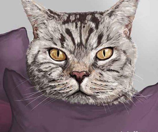 Millie Cat Potrait - Hob Hill